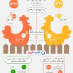 یکچهارم مرغداریهای کشور غیرفعالاند (اینفوگرافیک)