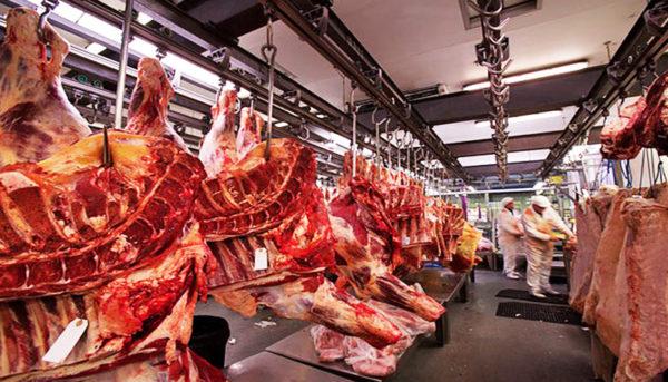 تولید گوشت در ایران چه تغییری کرده است؟ (اینفوگرافیک)