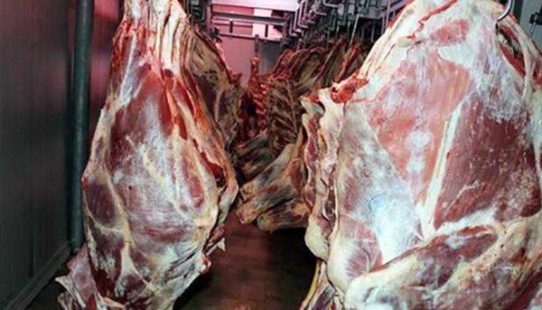 با مصوبه جدید دولت گوشت گرانتر میشود