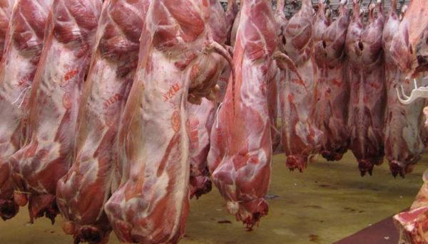 پیشبینی قیمت گوشت در روزهای آینده