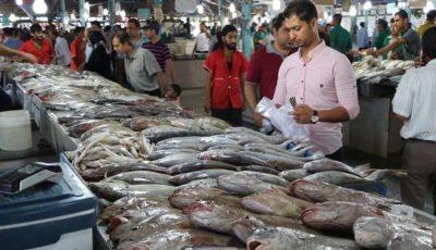 ماهی گران شد