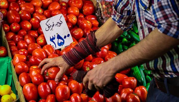 عامل اصلی نوسان قیمت خیار و گوجهفرنگی در بازار چیست؟
