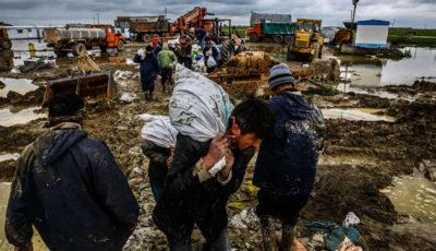 جزییات خسارات سیل به زیربخش دام و طیور در ۶ استان کشور