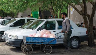 از ورود تا خروج مرغ در یک بازار عمده فروشی (گزارش تصویری)