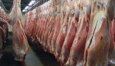 قیمت عجیب گوسفند ایرانی آن سوی مرزها