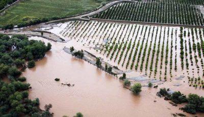 سیلاب ۵ هزار میلیارد ریال خسارت به کشاورزان جنوب کرمان وارد کرد
