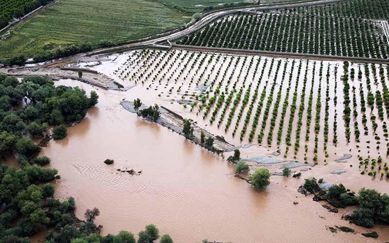 جزئیات مصوبه جدید دولت برای جبران خسارات سیل در بخش کشاورزی
