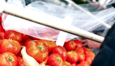 گوجه در صدر گرانی / قیمت گوجهفرنگی در پاییز بیش از 3 برابر شد