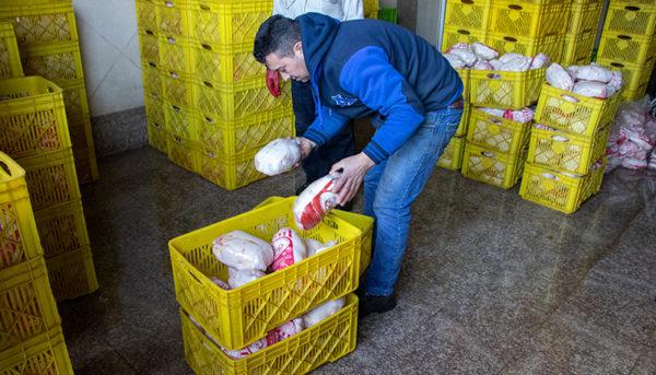 صادرات مرغ دوباره آزاد شد