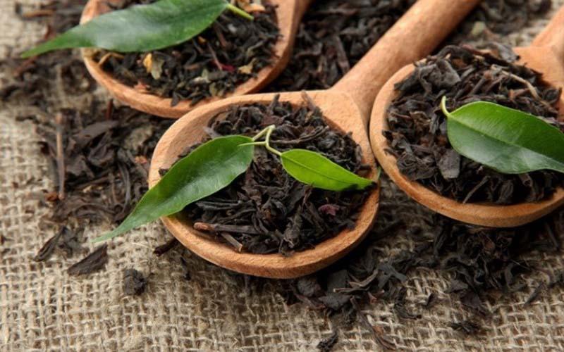 واردات چای سیاه 40 درصد افزایش یافت