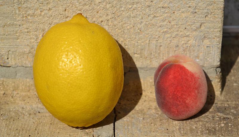 لیمو و هلو انتخاب