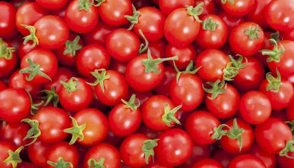 بزرگترین تاجران گوجه فرنگی در جهان / کدام کشورها بیشترین گوجه فرنگی را خریدوفروش میکنند؟