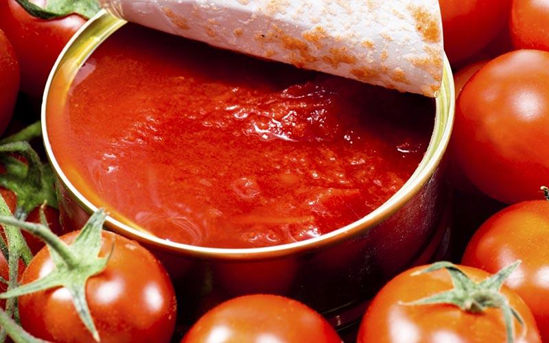 گوجه ارزان شد