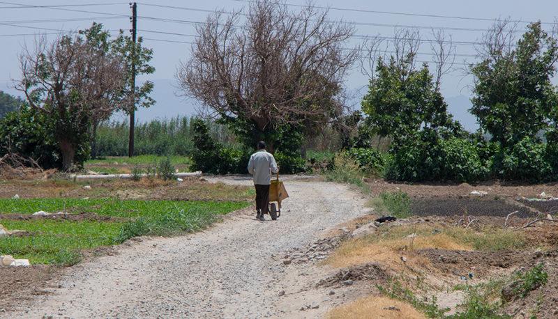 آمار عجیب بیکاری پس از سیل ؛ ۱۰۰ هزار روستایی بیکار شدند