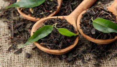 قیمت چای خارجی افزایش یافت