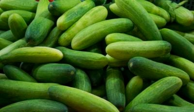 گرانی ۴۷ درصدی خیار تنها در یک ماه / در بهمن کدام خوراکی ارزان شد؟
