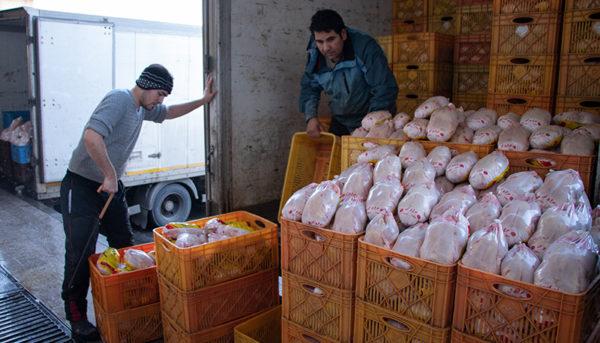 کاهش ۸۰۰ تومانی قیمت مرغ در بازار