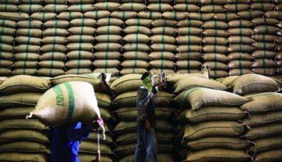 افتتاح مرکز بینالمللی تجارت و صادرات برنج ایران