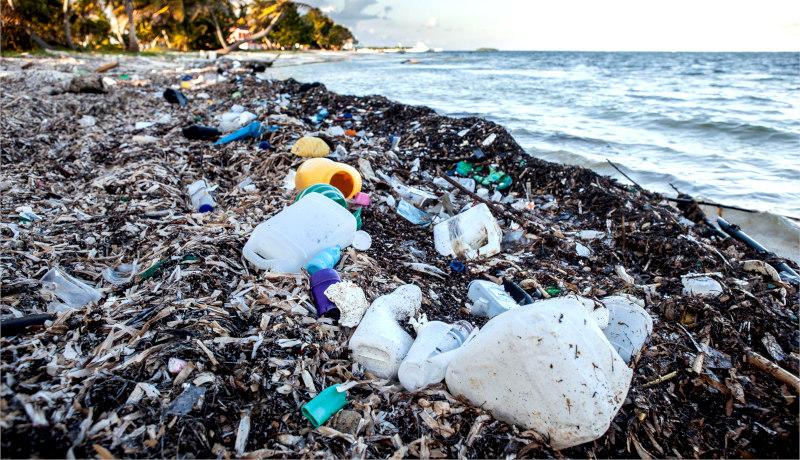 زباله اقیانوس بحران