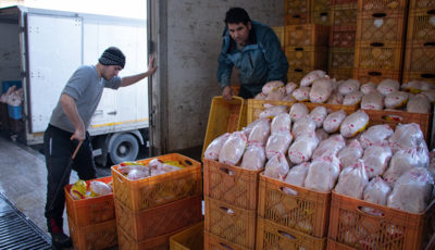 قیمت مرغ شب عید گران میشود / قیمت فعلی مرغ بین ۱۲ تا ۱۳ هزار تومان