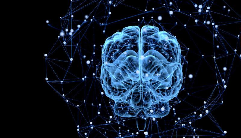 مغز فیبر نوری