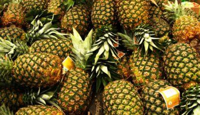بزرگترین تاجران آناناس در جهان / کدام کشورها بیشترین آناناس را خریدوفروش میکنند؟