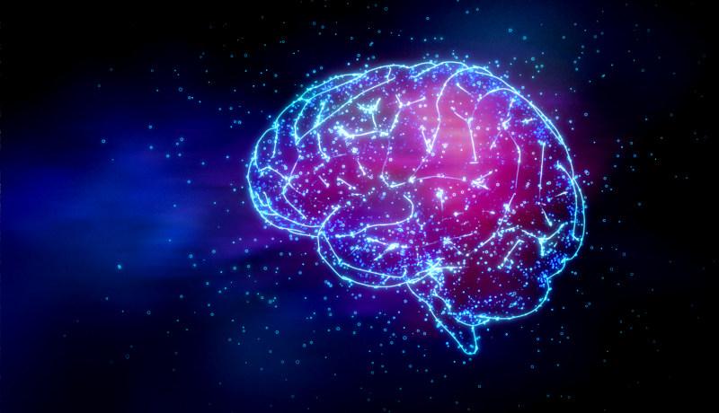 مغز سیمکشی
