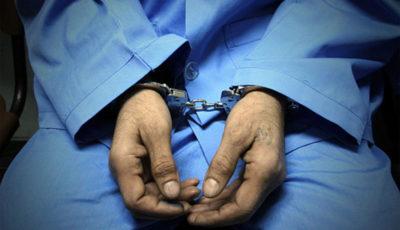 بزرگترین اَبَربدهکار بانکی دستگیر و به کشور بازگردانده شد