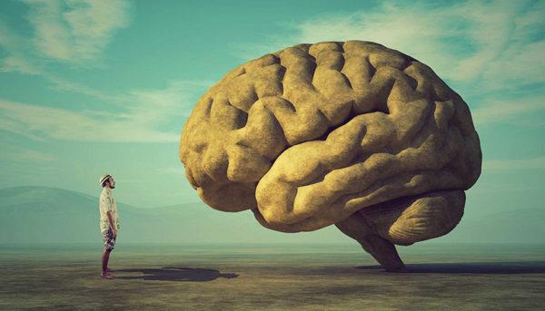 هفت راز که در مورد مغز خود نمیدانید!