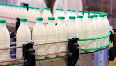 جنجال وجود سم آفلاتوکسین در شیر