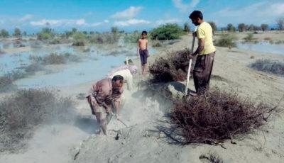 ۱۰۰ درصد زمینهای کشاورزی زرآباد زیر آب رفته است