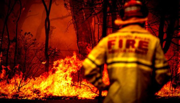 آتشسوزی جنگلهای استرالیا؛ سوخت چون عشقی که بر جانی فتاد