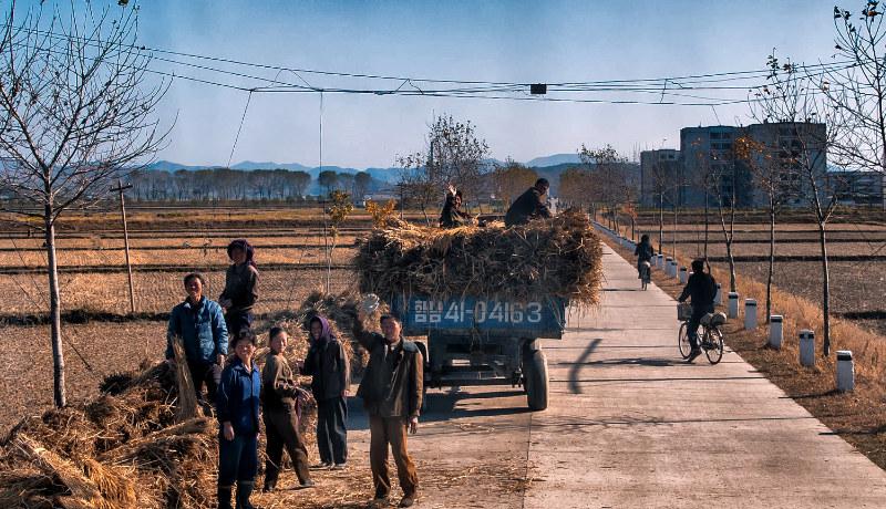 کشاورزان کره شمالی