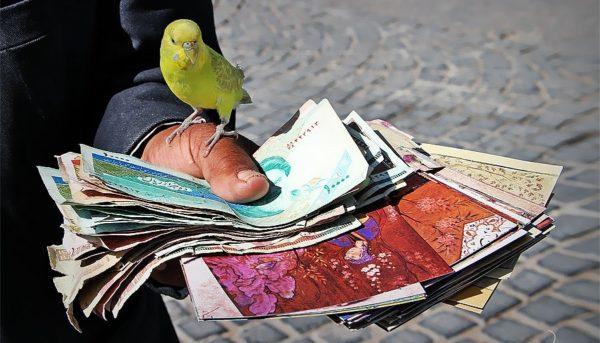 هر مقدار که میتوانید پول بدهید؛ بررسی یک آزمایش خیریه