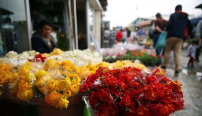 قیمت گل در بازار چقدر است؟