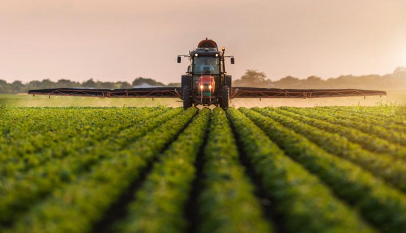 پیشبینی تولید ۱۲۸ میلیون تن محصولات کشاورزی در سال ۹۹