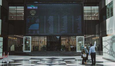 مشارکت ۴٫۵ میلیون نفر در عرضه اولیه سیتا