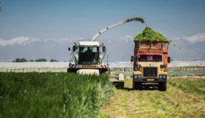 سرمایهگذاری سوئیسیها در ایران برای مدیریت پساب در مزارع شیری