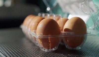تعیین قیمت تخم مرغ بستهبندی