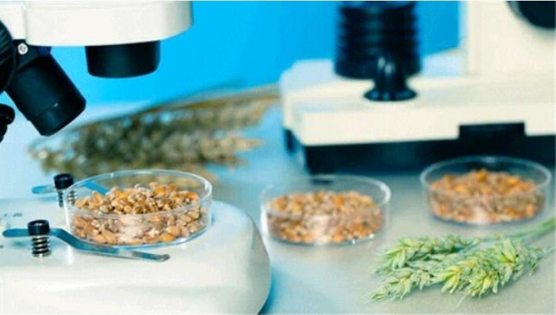 دسترسی تولیدکنندگان غذا و دارو به نتایج آنالیز الکترونیکی