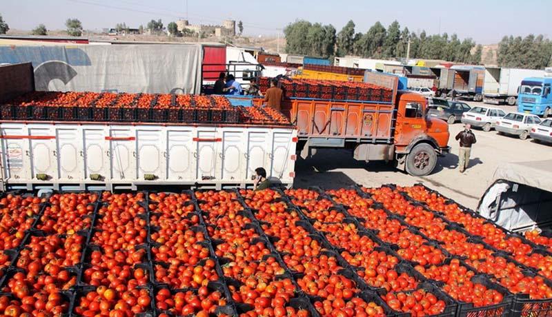 قیمت گوجه یک ماهه 3 برابر شد / معرفی رکوردداران گرانی (اینفوگرافیک)