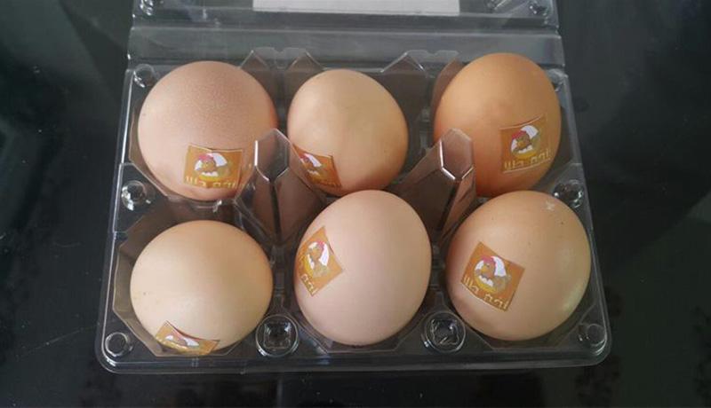 عرضه تخم مرغ بهصورت بستهبندی اجباری میشود