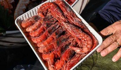مشاهده ویروس کرونا در بستهبندی میگوی سعودی