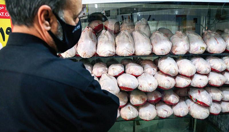 قیمت مرغ افزایش یافت؟