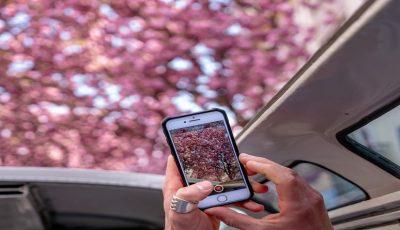 4 قابلیت مهم که باعث میشود موبایل شما بهترین دوربین را داشته باشد