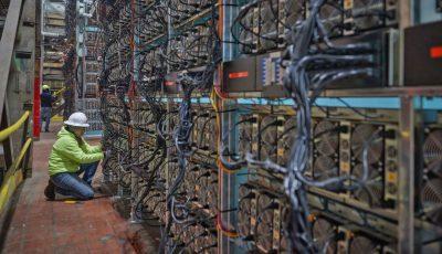 مزرعه بیتکوین چقدر سودآوری دارد؟ / حقایقی درباره استخراج بیتکوین چینیها در رفسنجان