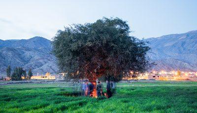 سرگذشت بورسبازان مالاستریت / ضرر ۲۵ میلیاردی در روستای بورسی ایران