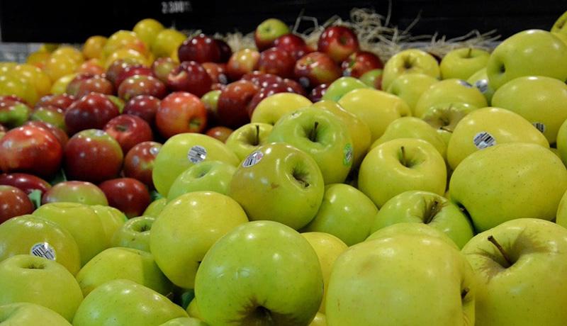 صادرات سیب در ازای واردات موز آزاد شد