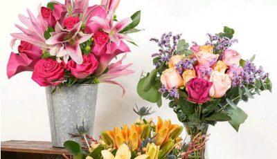بهترین پیشنهاد گل شاخهای برای هدیه به عزیزانتان کدام است؟