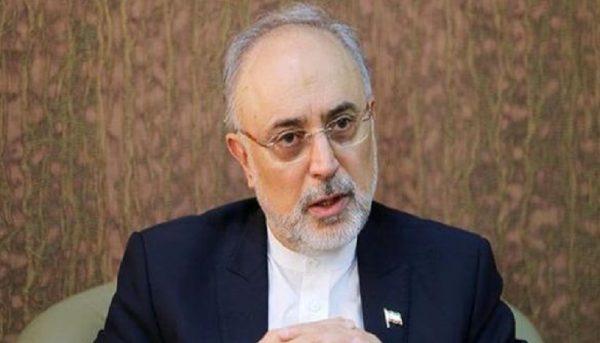 علی اکبر صالحی احتمال حضورش در انتخابات را تایید کرد